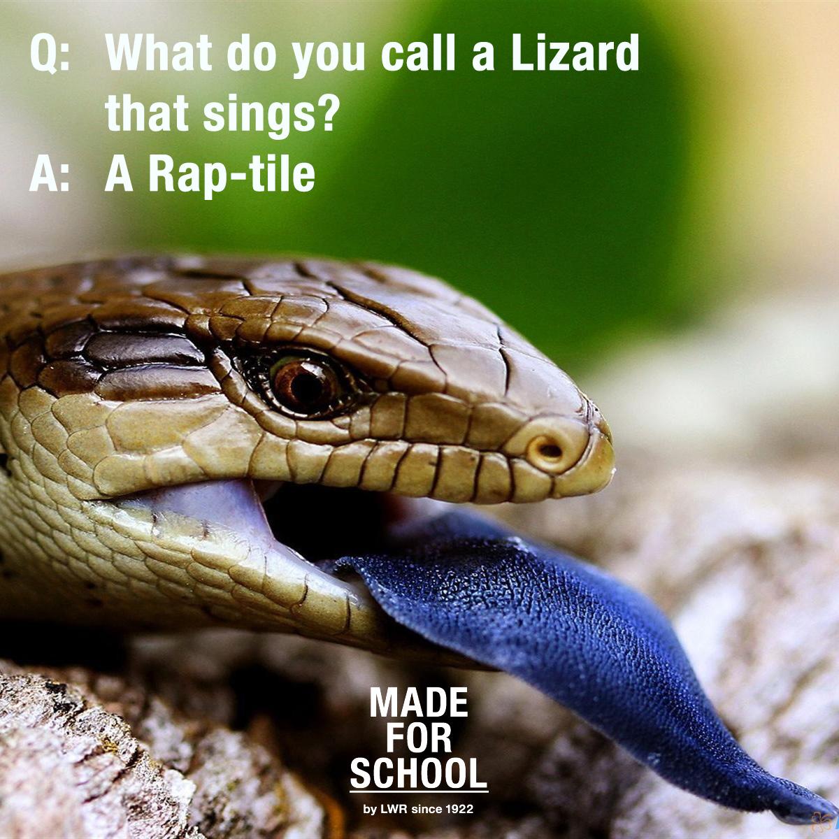 School-Run Joke: What do you call a Lizzard that Sings?