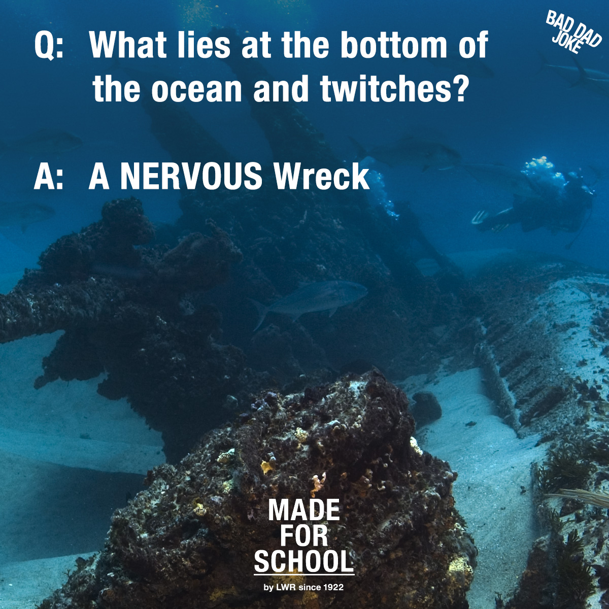 Bad Dad Joke: What lies at the bottom of the ocean and twitches?