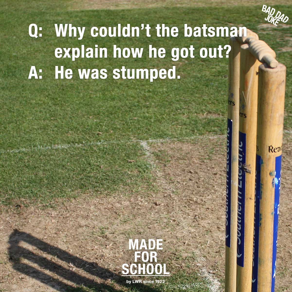Cricket Chaos