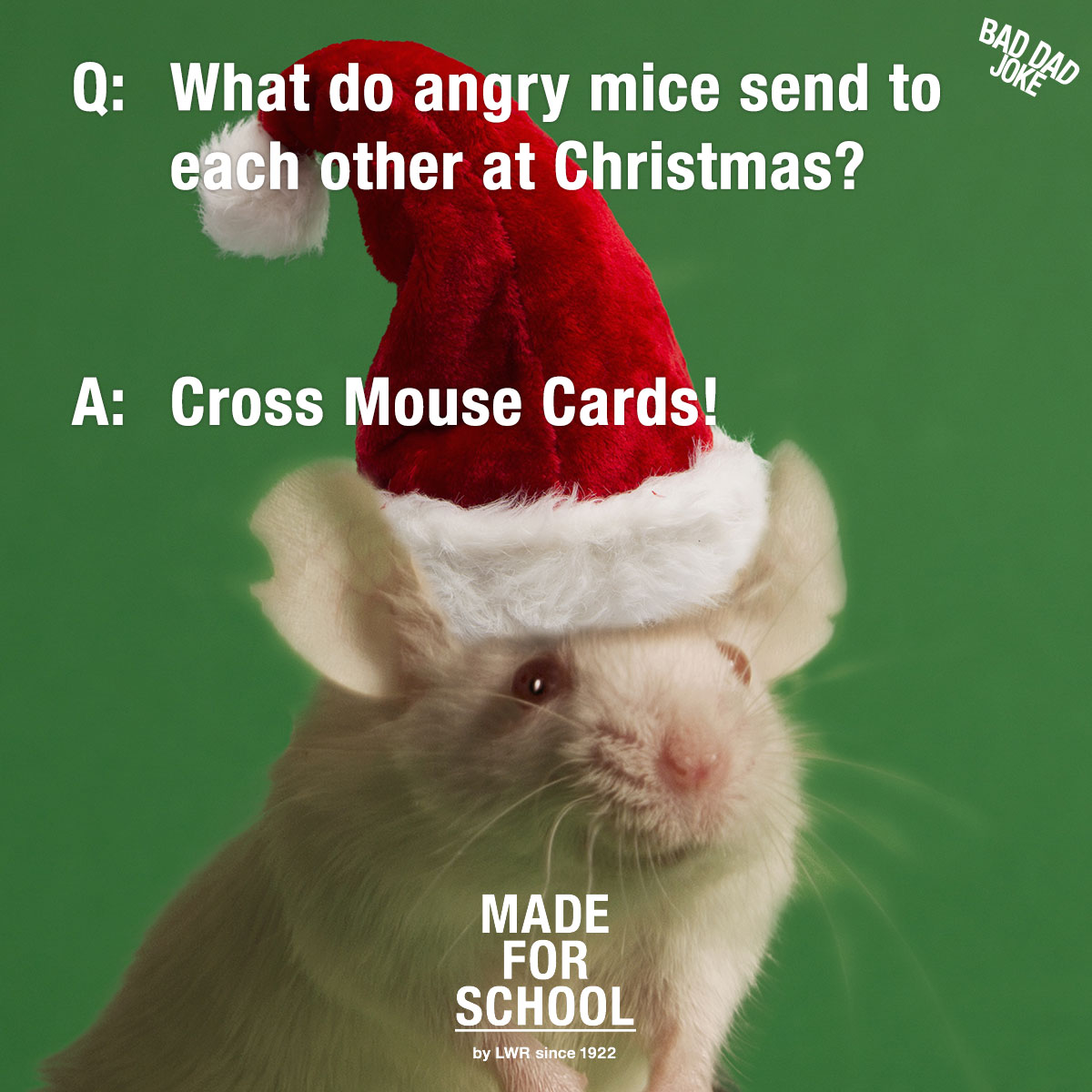Bad Dad Joke: Angry Mice | Made For School