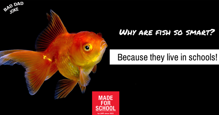 Bad dad joke smart fish made for school for Are fish smart