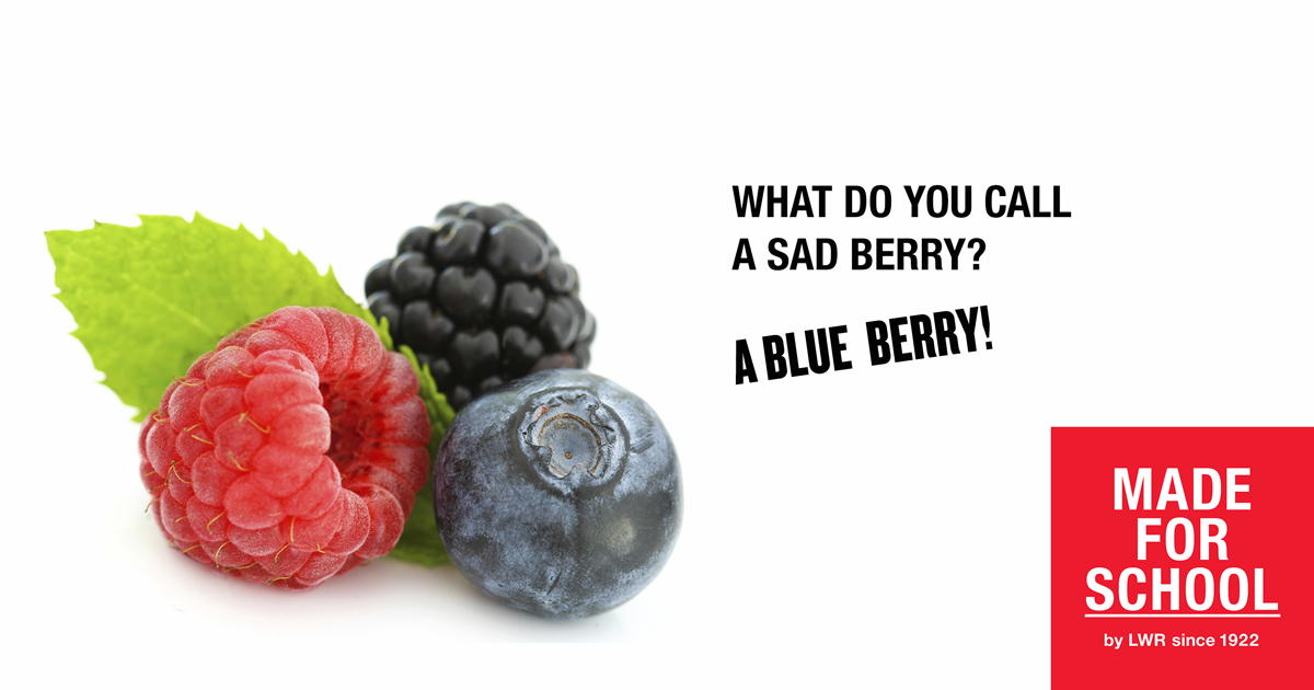 BAD DAD JOKE: Sad Berry